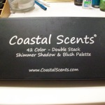 Coastal Scents Double Stack Shimmer Palette Review